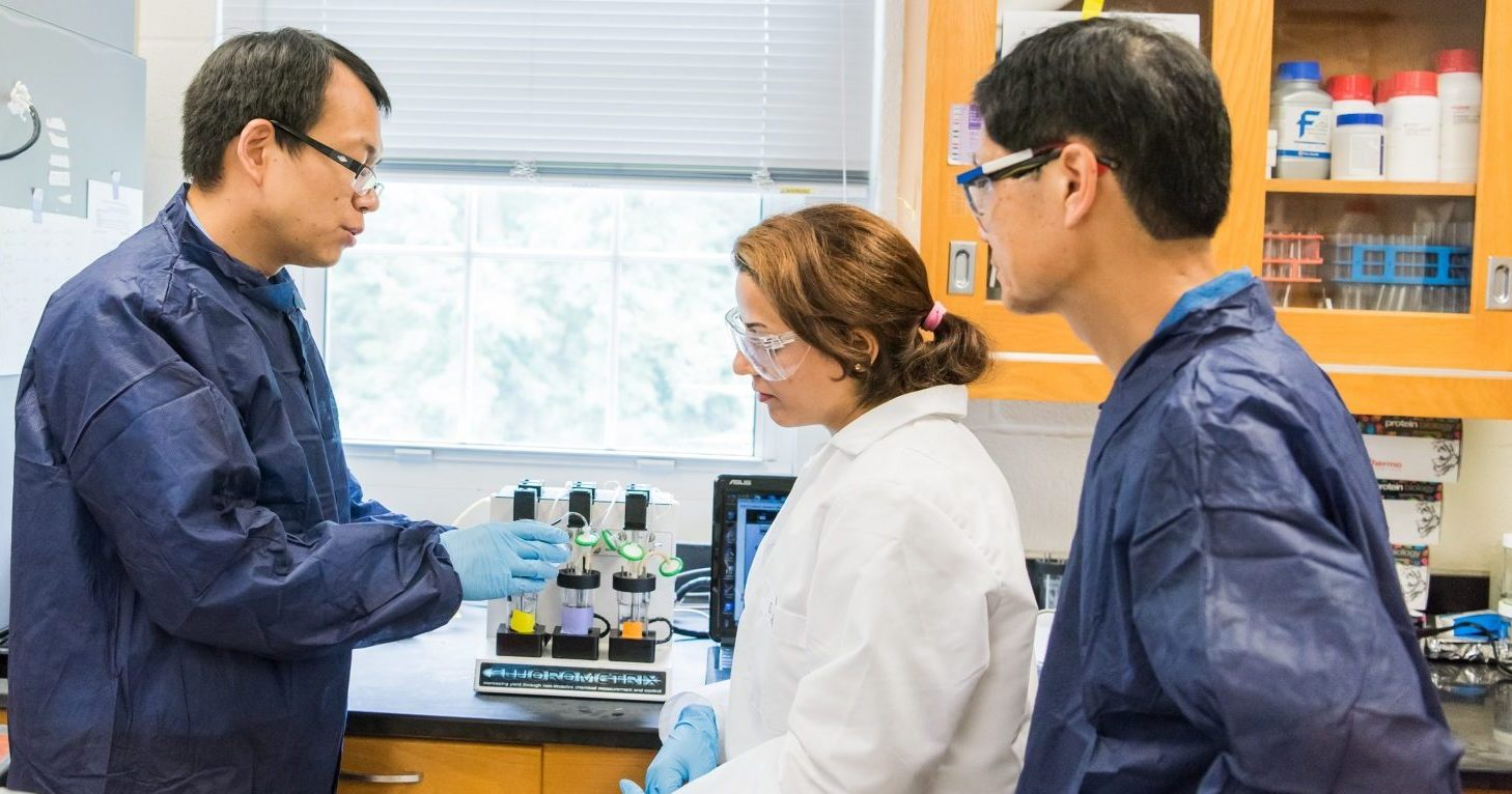 UMBC research team awarded grant to innovate anti-malarial drug production