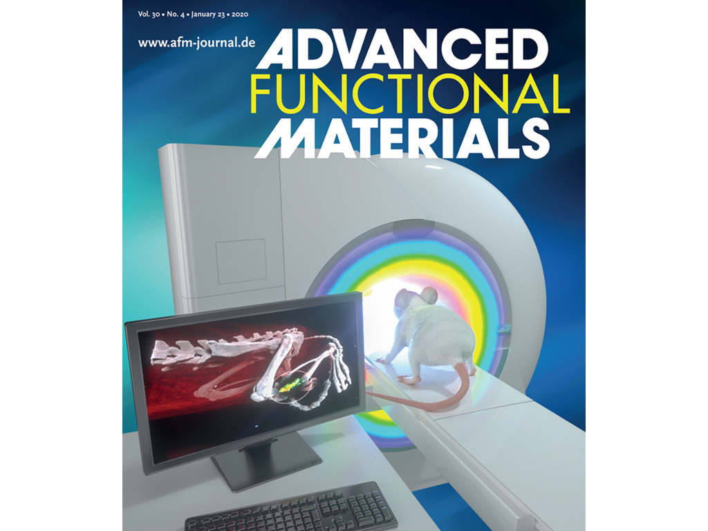 Dr. Dipanjan Pan's research on the cover of Advanced Functional Materials